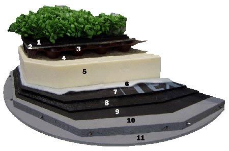 Принципиальная схема устройства зеленой кровли.